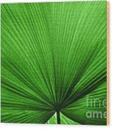 The Big Green Leaf Wood Print
