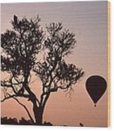 The Bird And The Balloon Wood Print