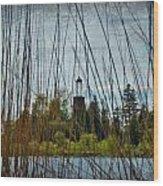 The Birdcage Lighthouse Of Baileys Harbor Paint  Wood Print