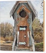 The Birdhouse Kingdom - Belted Kingfisher Wood Print