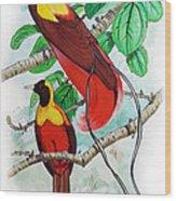 The Birds Of Paradise Wood Print