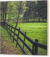 The Black Fence Wood Print