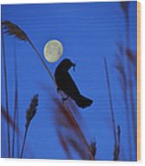 The Blackbird And The Moon Wood Print