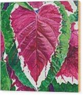 The Bleeding Heart Wood Print