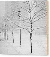 The Blizzard Bw Wood Print