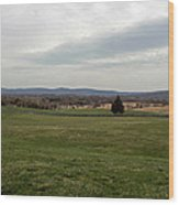 The Bloody Fields Of Antietam 1 Wood Print
