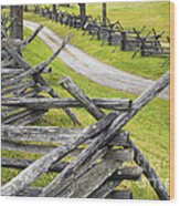 The Bloody Lane At Antietam Wood Print