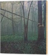 The Blue-green Forest Wood Print