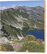 The Blue Vasilashko Lake Pirin National Park Bulgaria  Wood Print