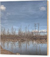 The Blue Water Desert Wood Print