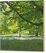 The Bluebell Wood Wood Print