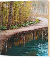 The Boardwalk Wood Print by Boon Mee