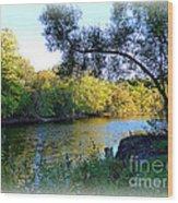 The Boat Dock Wood Print