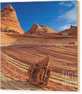 The Bone Yard In The North Coyote Buttes Wood Print