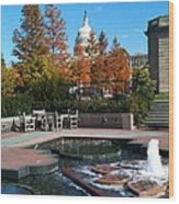 The Botanic Garden Fountain Wood Print