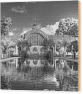 The Botanical Building In Black And White Wood Print