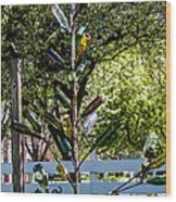 The Bottle Tree Wood Print