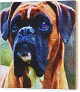 The Boxer - Painterly Wood Print