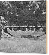 The Bridge 13 Wood Print