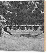 The Bridge 13 Wood Print