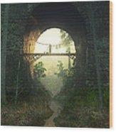 The Bridge Under The Bridge Wood Print
