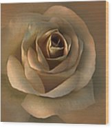 The Bronze Rose Flower Wood Print