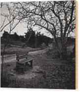 The Brooding Bench Wood Print