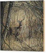 The Buck Wood Print