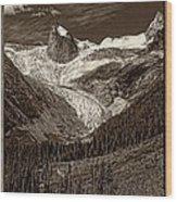 The Bugaboos Monochrome Wood Print