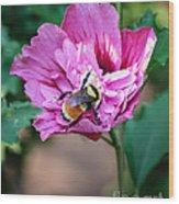 the Bumble Bee Wood Print