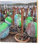 The Buoys Of Summer Wood Print
