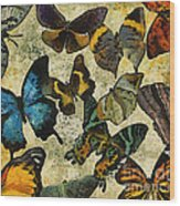 The Butterfly Collection #1 Wood Print