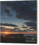 The Calf From A Hilltop In Twilight I Wood Print