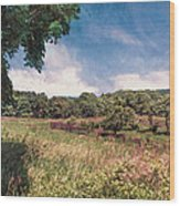 The Calling Of Summer Fields Wood Print