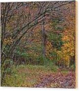 The Camp Drive Wood Print