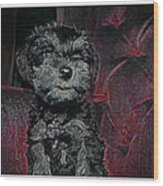 The Canine's Throne  Wood Print