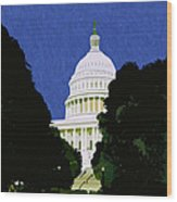 The Capitol  Wood Print