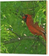 The Cardinal Painterly Wood Print