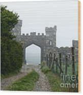 The Castle Gate Wood Print
