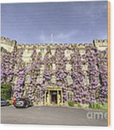 The Castle Hotel  Wood Print