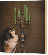 The Cat And The Candelabra Wood Print