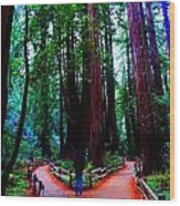 The Cathedral Wood Print