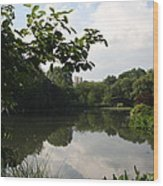 The Central Park Pond Wood Print