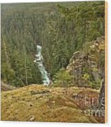 The Cheakamus River Gorge Wood Print
