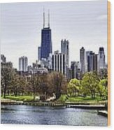 The Chicago Skyline Day-001 Wood Print