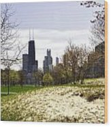 The Chicago Skyline Day-003 Wood Print