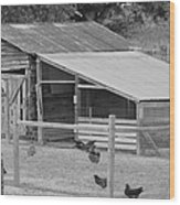 The Chicken House Wood Print