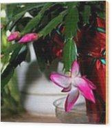 The Christmas Cactus Wood Print