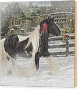 The Christmas Pony Wood Print by Fran J Scott