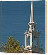 The Church Of The Redeemer Wood Print